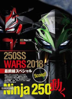Kawazaki-ninja-250-young-machine