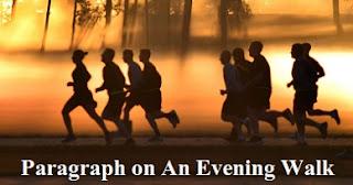 Paragraph on An Evening Walk