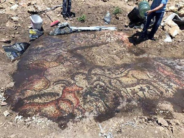 Early Byzantine mosaic discovered by farmers in SE Turkey