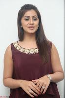 Nikki Galrani in a Brown Shining Sleeveless Gown at Nakshatram music launch ~  Exclusive 081.JPG