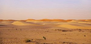 من هو أمية بن خلف صحراء الصحراء الرمال sahara desert sand
