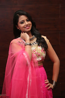 Geethanjali sizzles in Pink at Mixture Potlam Movie Audio Launch 013.JPG