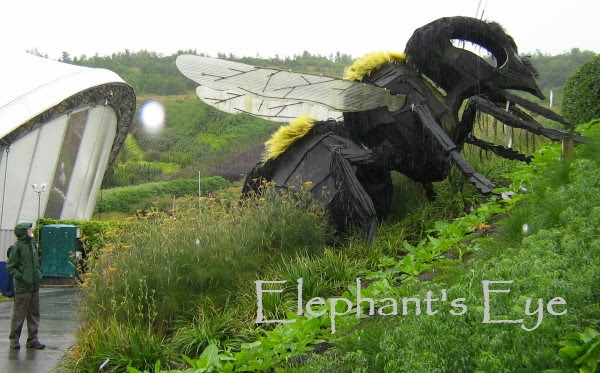 Bee sculpture at the Eden Project with the Ungardener dressed for July in Cornwall