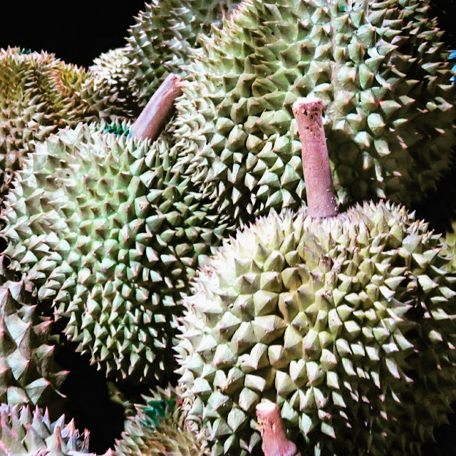 Durians in Siem Reap Cambodia