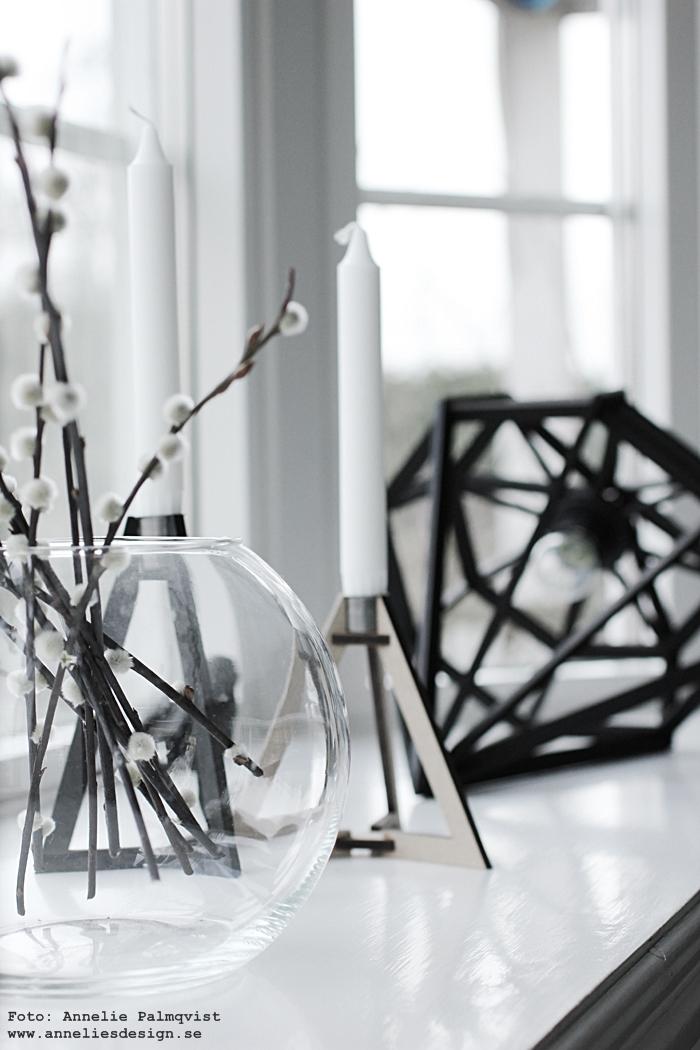fönster, burspråk, döden lampa, lampor, diamant, diamantlampa, diamantlampor, diamanter, ljusstake, ljusstakar, tvåfota design, inredning, webbutik, webbutiker, webshop, annelies design, anneliesdesign, vide, videkvistar, element, elementet, vitt, svart och vitt, koltrast, fågel, fåglar, spröjs, kärcher fönstertvätt,