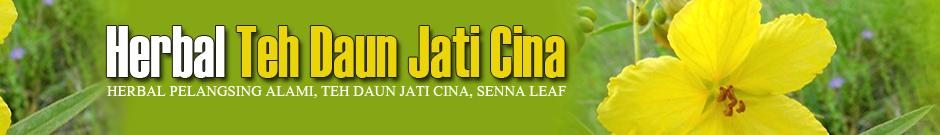 Teh Daun Jati Cina Yogyakarta Jati Cina Jogja Tanaman