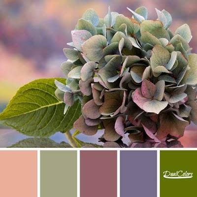 Variedad En Color Paleta 44