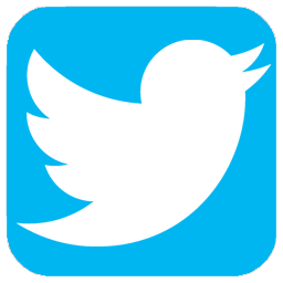 Perfil Público do Twitter