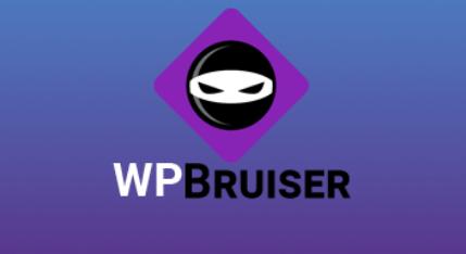 Plugin Security Terbaik Untuk WordPress WP Bruiser
