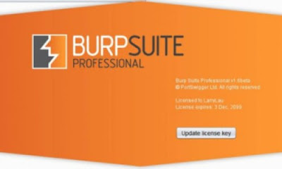 Burp Suite Professional 2020.8 Build 3537 FULL + ALL ADDONS + KEYGEN