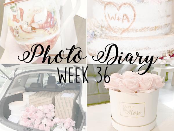 Photo Diary Week 36
