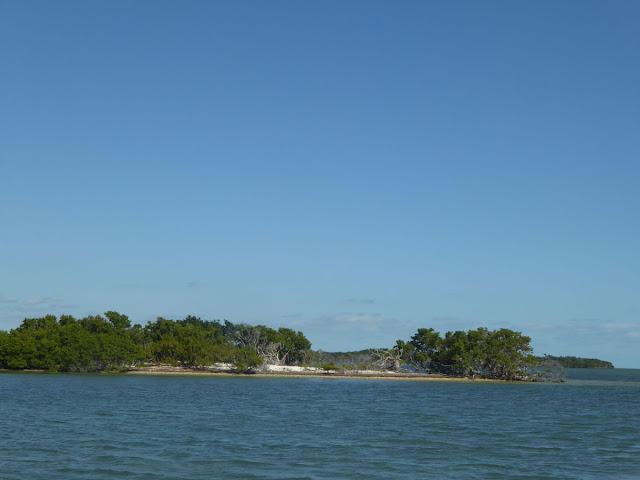 john pennekamp coral reef park