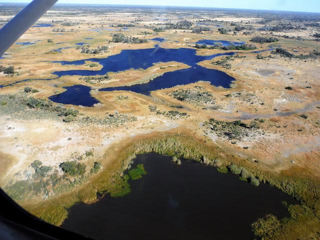 Sobrevolando el Delta del Okawango