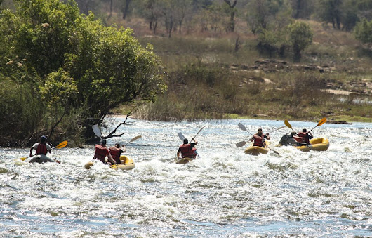 July 23 - Canoeing & Walking Safari along the Zambezi