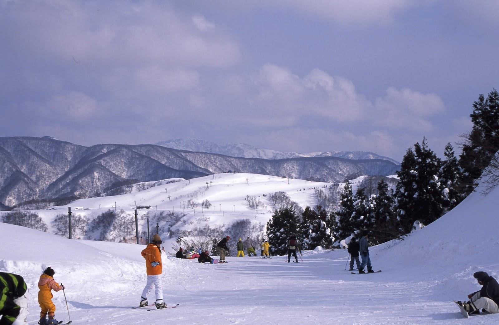場 スキー 余呉 高原