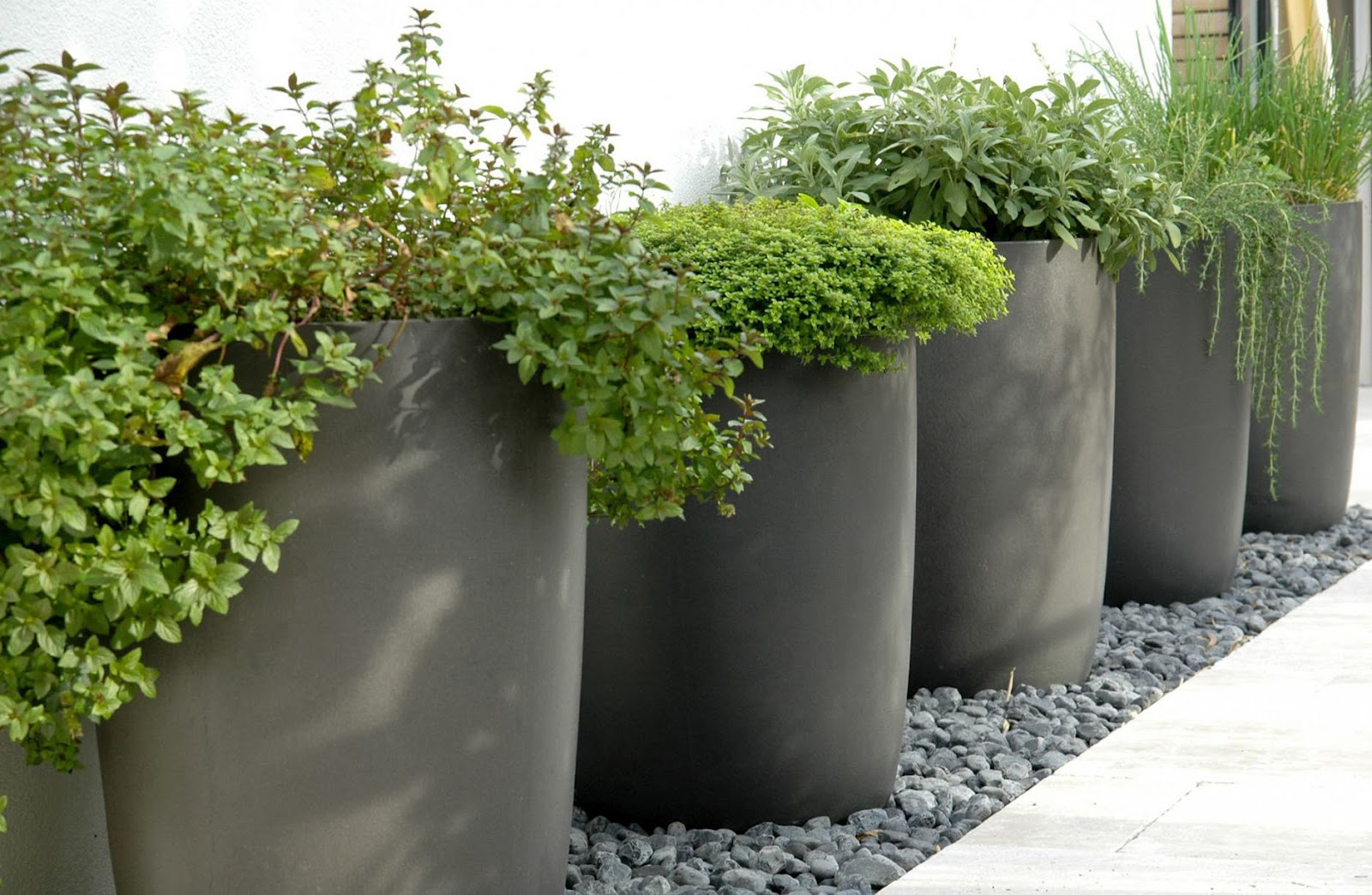 Concrete Outdoor Pots English