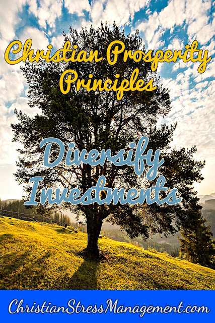 Christian Prosperity Principles: Diversify Investments