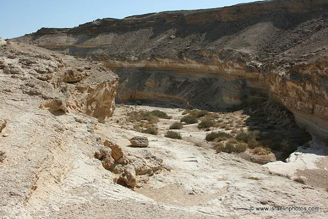 Israel Travel Guide: Negev
