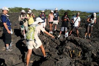 Galapagos Island Tourist Visitor Statistics