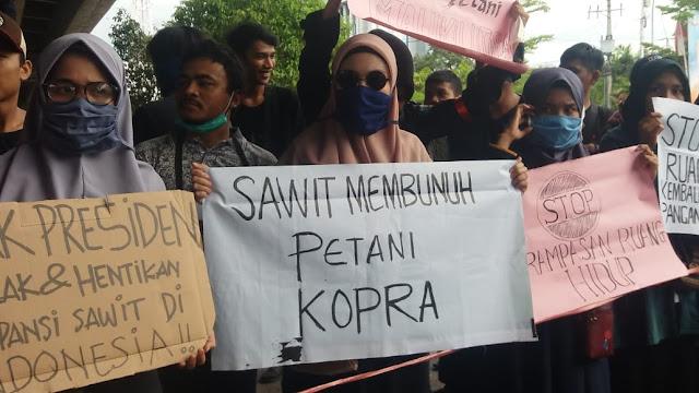 Harga Kopra Terjun Bebas, Mahasiswa: Sawit Membunuh Petani Kopra