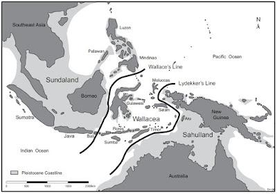 Sejarah Geologi Persebaran Fauna di Indonesia