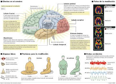 Efectos de la Meditación sobre el cerebro