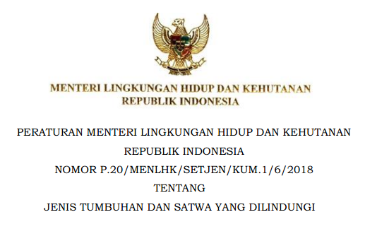 Peraturan Menteri Permen Lhk Nomor P  Menlhk Setjen Kum