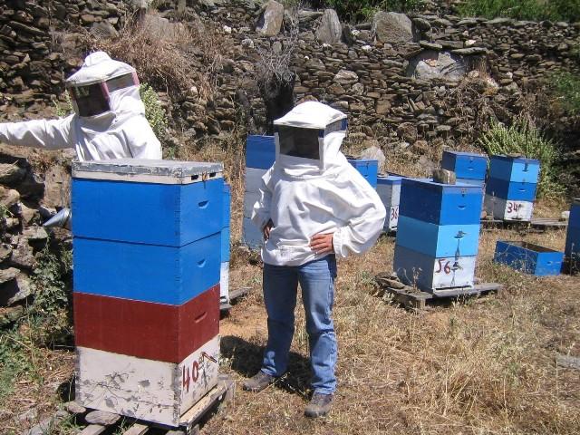 Για ένα καλό ξεκίνημα στην Μελισσοκομία