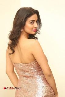 Actress Heena Panchal Pictures in Long Dress at Thikka Audio Launch  0036.JPG