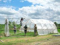 Cara Memasang Plastik UV Untuk Greenhouse