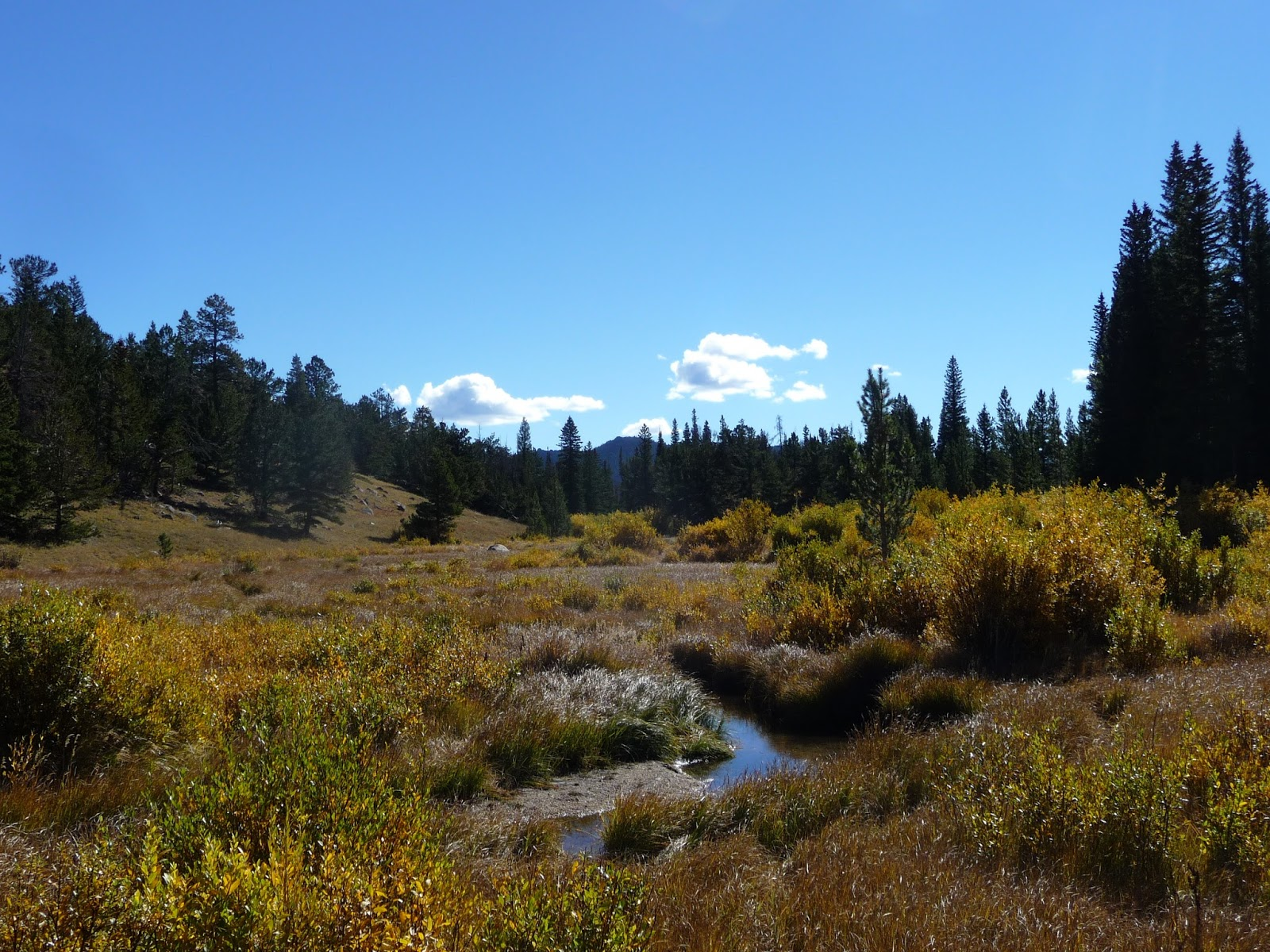 we took a lot of photos as we drove along the main highway through the park trail ridge road