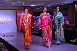 South Indian Celebrities Pos at Love For Handloom Collection Fashion Show  0155.jpg
