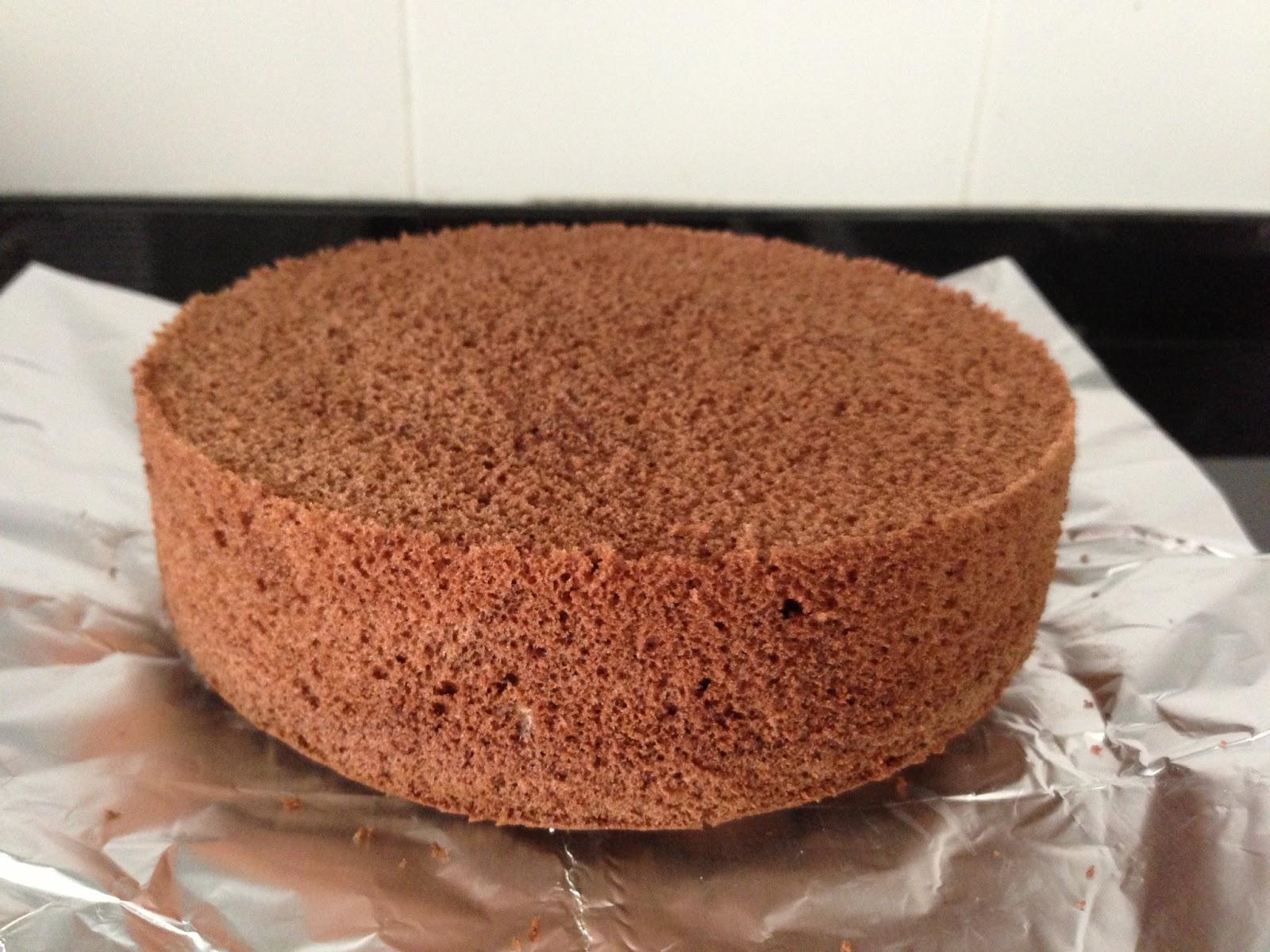 Baking Science Chocolate Sponge Cake