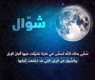 معنى شهر شوال عند العرب