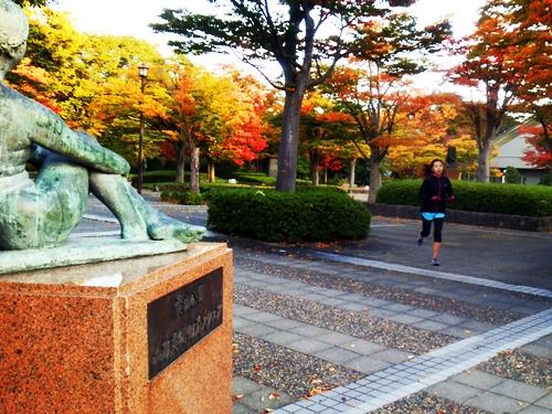 霞城公園やその周辺が一気に秋めいてきました