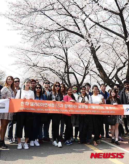 Cherry Blossom and More  at the Yeouido Spring Flower Festival ((영등포 여의도 봄꽃축제) with the Global Seoul Mates