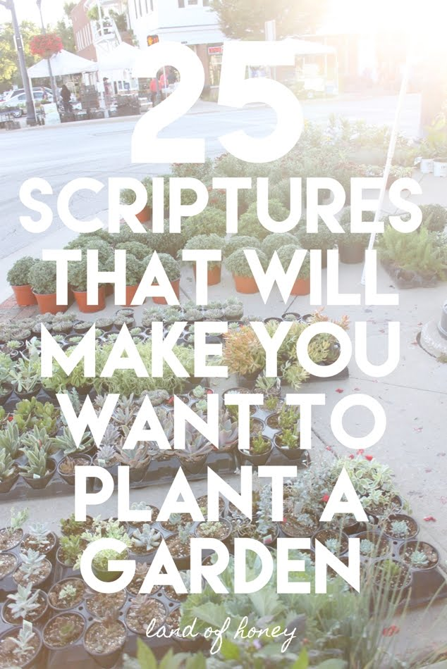 A Gardener's Perspective on Scripture