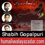 http://www.humaliwalayazadar.com/2016/06/shabih-gopalpuri-nohay-2015-to-2017.html