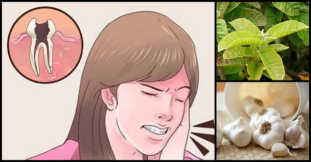 Different Types Of Herbs As Remedy For Toothache