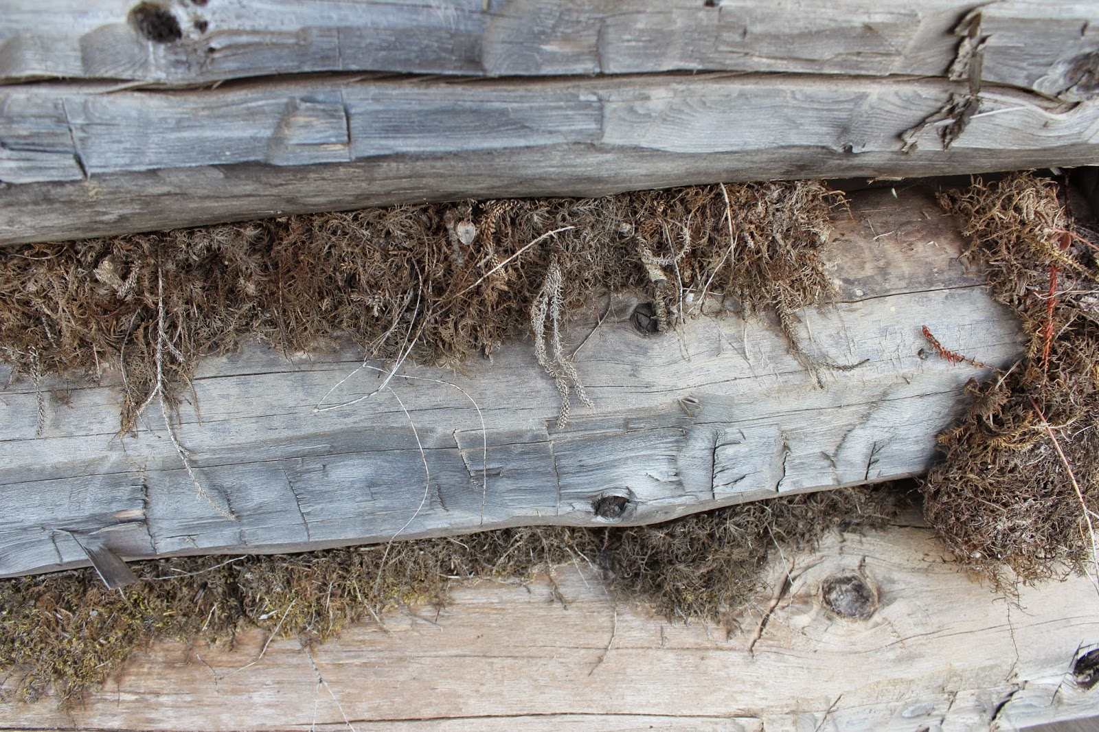 Keeping The Alaska Log Cabin Warm In Desperately Cold