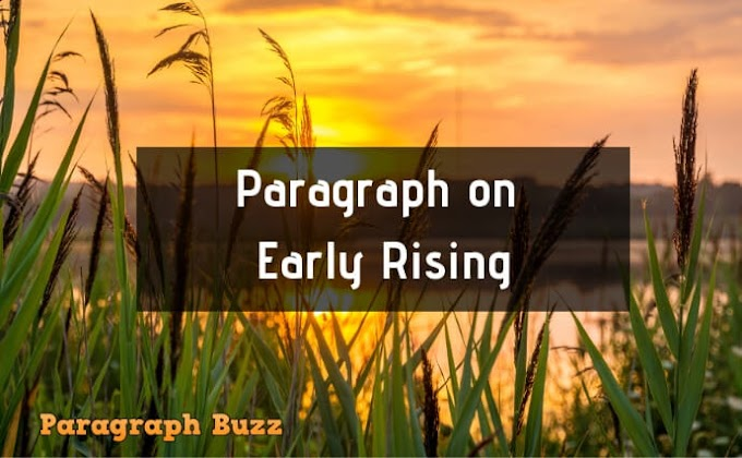 Short and Long Paragraph on Early Rising