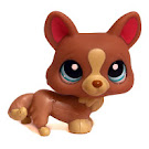 Littlest Pet Shop Large Playset Corgi (#1158) Pet