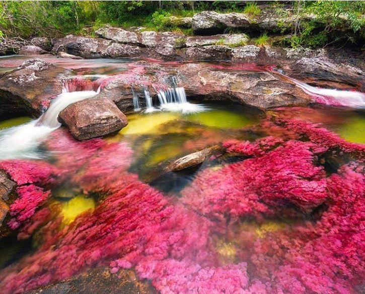 Sungai Lima Warna, Kolombia