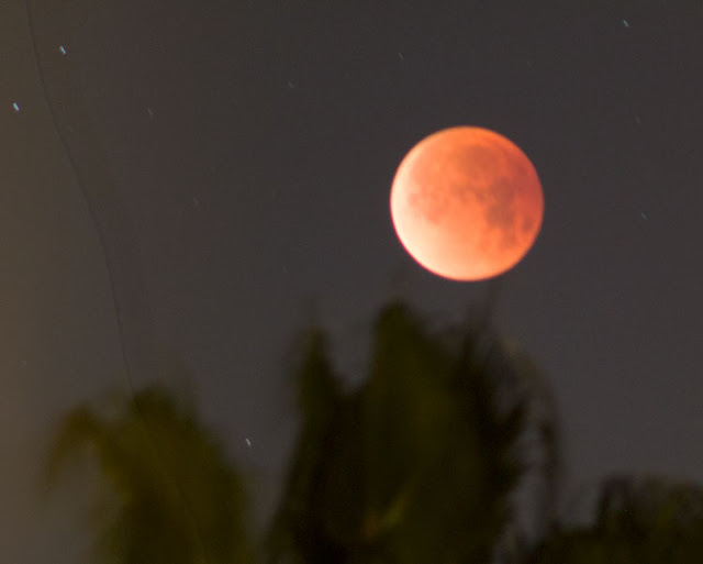 Blood moon of January 31, 300mm, 6 second exposure (Source: Palmia Observatory)