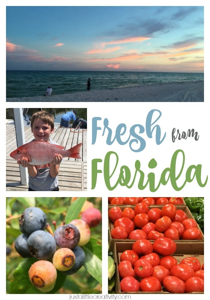 Florida seafood, veggies, and fruit are delicious