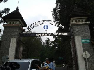 Puncak Jawa Barat merupakan salah satu provinsi di Indonesia yang memiliki banyak tujuan wisata yang menarik dari wisata alam di daerahnya, salah satu objek wisata alam yang telah menjadi tujuan favorit wisatawan di sekitar atau di luar kota yaitu kebun raya cibodas