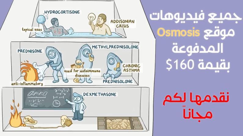 Osmosis USMLE Board Review 2018 Premium (875 Videos Medical