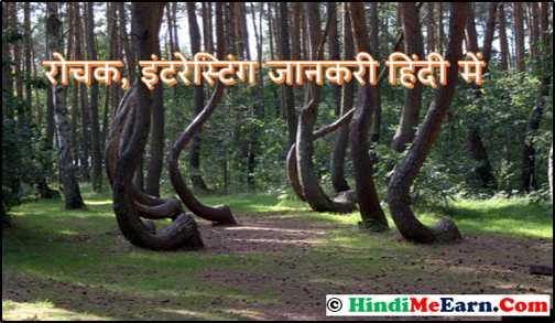 Amazing facts in Hindi-रोचक, इंटरेस्टिंग जानकरी हिंदी में