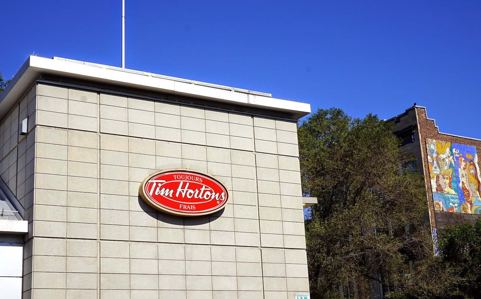 tim hortons montreal