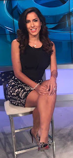Sexiest in TV News pic, USA tv news goddess pics, American lovely tv host pics, USA TV host photo
